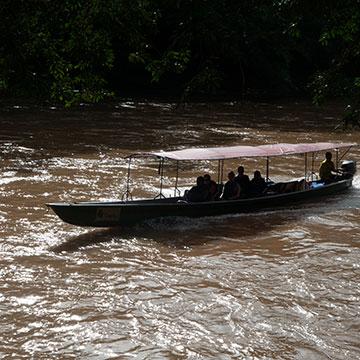 access to amazon ecuador in motorized canoe